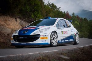 Rally peugeot andreucci campione