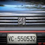 Peugeot205GTI_gtm_013
