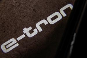 Audi e-tron 25