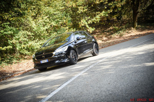 DS5 Performance Line 28