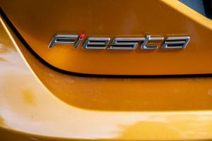 Fiesta Active