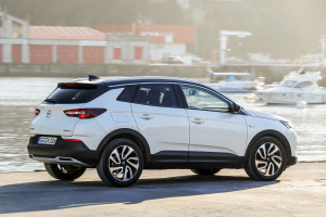 Opel Grandland X Ultimate 13