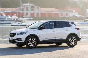 Opel Grandland X Ultimate 14