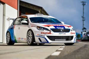 Accorsi 308 Racing Cup 10